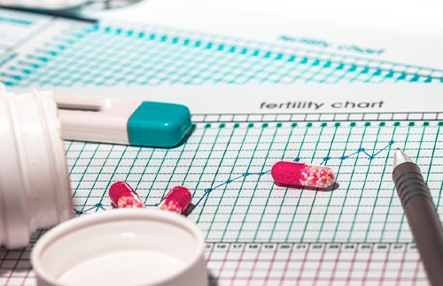 fertility chart and pregnancy test