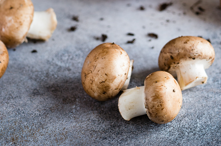 Mushrooms May Affect Cognitive Health
