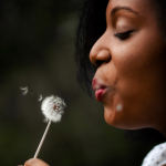 woman blowing dandelion in summer