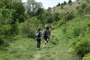 Take a Hike for National Physical Fitness and Sports Month!