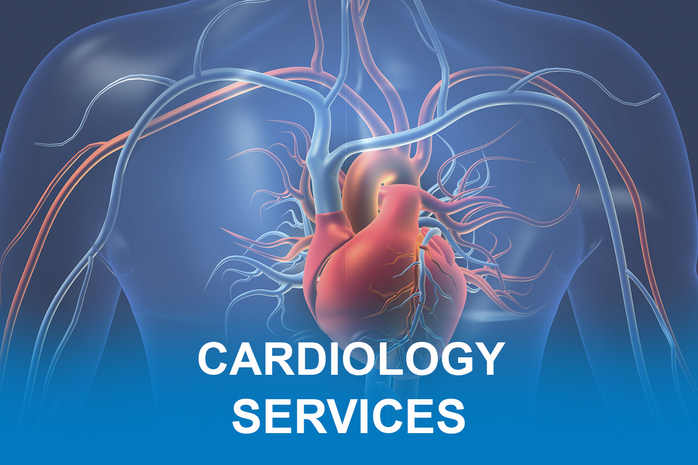 Cardiology Services